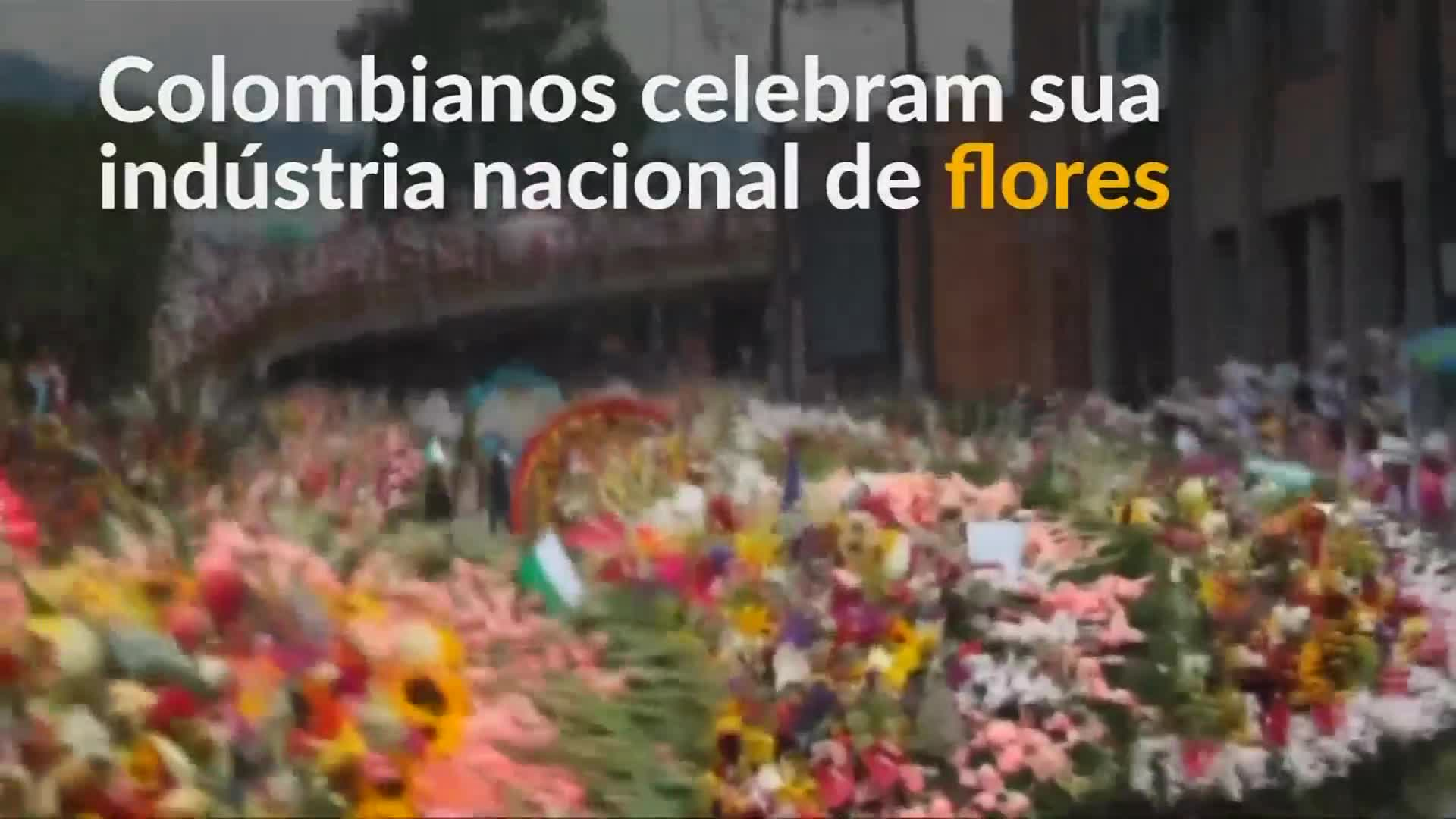 Dietas de famosas colombianas