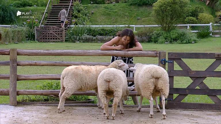 Fernanda Lacerda conversa com as ovelhas: 'Educadinhas da mamãe'